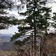 吊水湖森林生态风景区