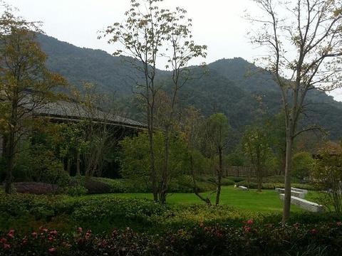 舜皇山国家森林公园旅游景点图片