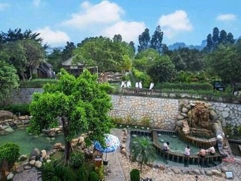 龙佳生态温泉山庄旅游景点图片