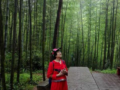 赤水竹海公园旅游景点图片