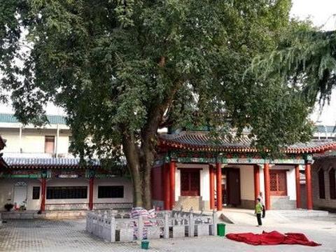 天静宫旅游景点图片