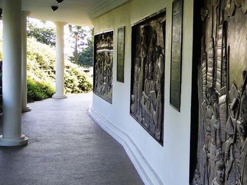 花柏山公园旅游景点图片