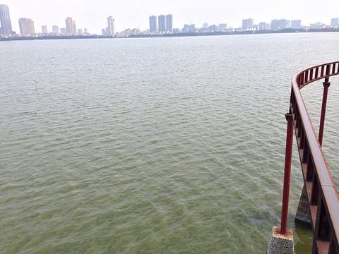 青山湖风景区的图片