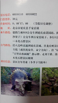 百里山水画廊—硅化木