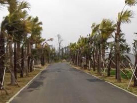 瑶湖旅游景点图片