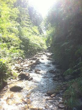 天泉瀑布旅游景点攻略图