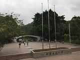 云溪生态公园