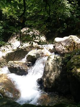 牛头山国家森林公园旅游景点攻略图