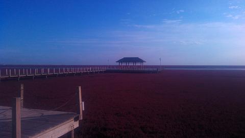 红海滩国家风景廊道旅游景点攻略图