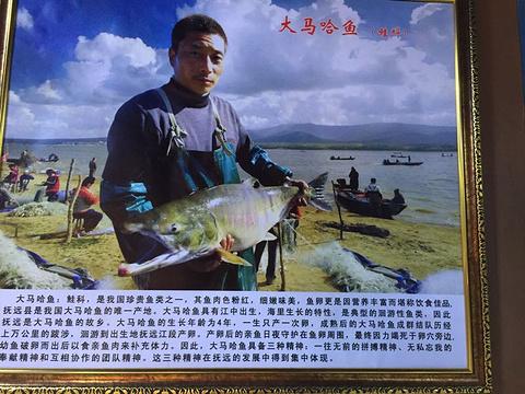 抚远黑龙江鱼展馆旅游景点攻略图