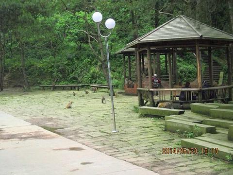 雨台山风景区旅游景点图片