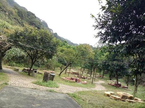 从化大金峰百花果景区旅游景点图片