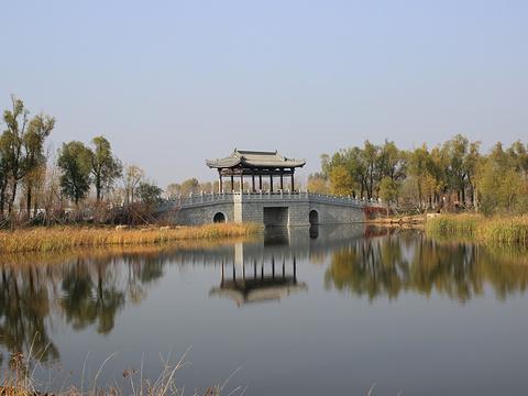 长春北湖国家湿地公园旅游景点图片