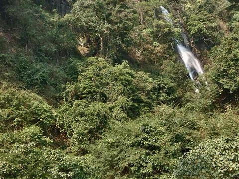 金林水乡旅游景点图片