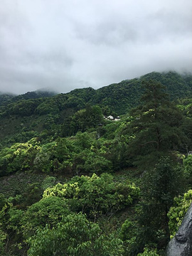 石台牯牛降旅游景点攻略图