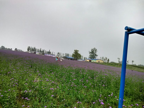 六安蓝溪大花谷旅游景点图片