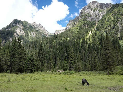 白马王朗国家级自然景区旅游景点攻略图