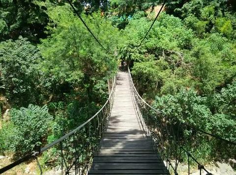 黎母山森林公园旅游景点攻略图