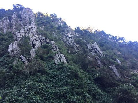 太和古洞旅游景点攻略图