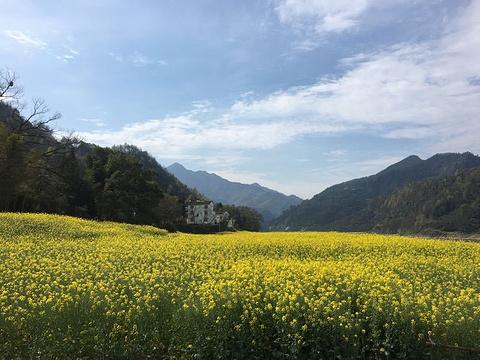 新安江山水画廊旅游景点攻略图