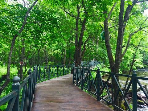 亚布力虎峰岭簸箕崴子景区旅游景点图片