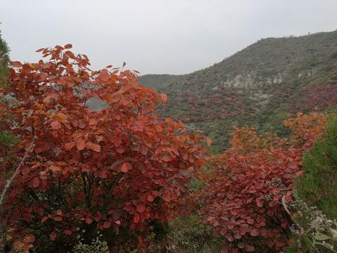 三王峪山水风景园旅游景点图片