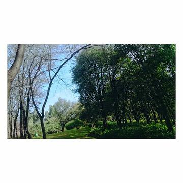 昆明植物园旅游景点攻略图
