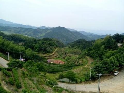 福寿山森林公园旅游景点图片