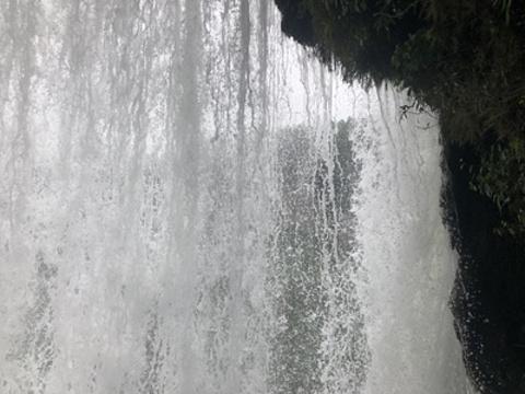 黄果树奇石馆旅游景点攻略图