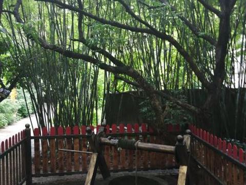 北海大江埠旅游景点图片