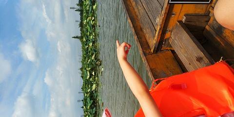 华侨城古劳水乡文化生态旅游度假区旅游景点攻略图