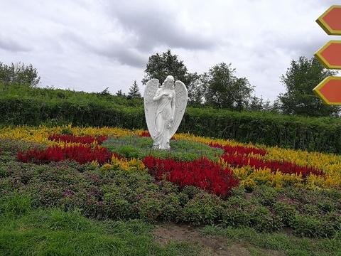 普罗旺斯薰衣草庄园旅游景点图片