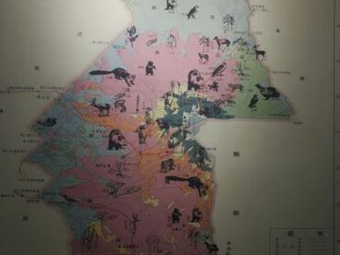 长白山自然博物馆旅游景点图片