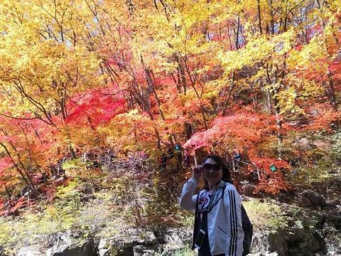 筐子沟生态风景区旅游景点图片