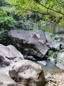 幽谷逸林旅游景点攻略图