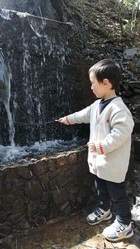 金沙桂花温泉旅游景点攻略图