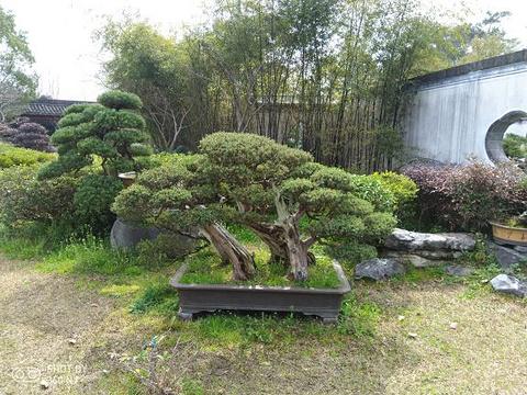 棠樾牌坊群鲍家花园旅游景点图片