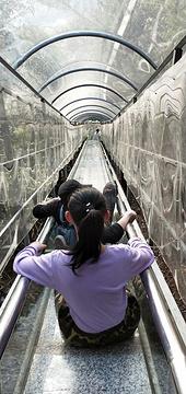 浏阳石牛寨风景区的图片