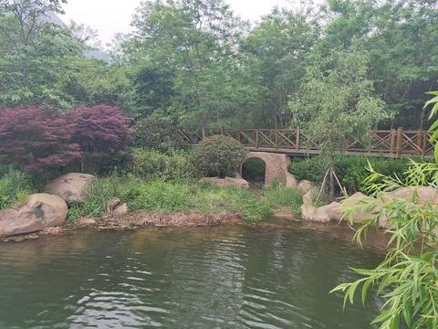 浮山森林公园旅游景点图片
