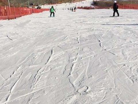 云佛滑雪场旅游景点图片