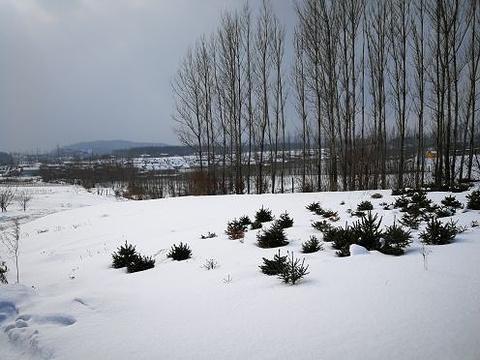 亚布力国家森林公园旅游景点攻略图