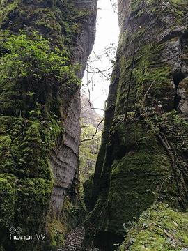 山王坪喀斯特国家生态公园旅游景点攻略图
