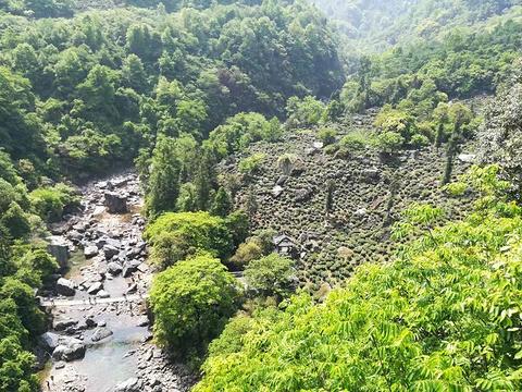 石台牯牛降旅游景点图片