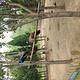 黄河三角洲动物园