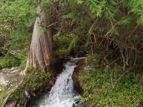 夏诺多吉旅游景点图片