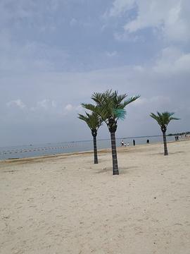 骆马湖沙滩公园旅游景点攻略图