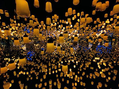 EPSON teamLab 无界美术馆:teamLab Borderless Shanghai