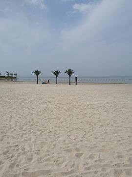 骆马湖沙滩公园的图片