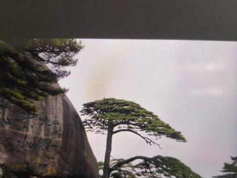 西海大峡谷旅游景点图片
