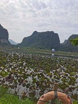 峰林小镇旅游景点攻略图